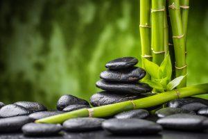 Healthy Living in Black Seed